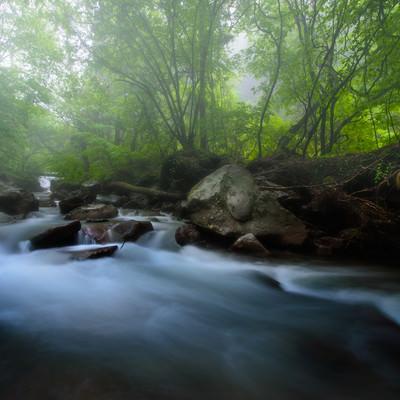 横谷渓谷の静かに流れる川の写真