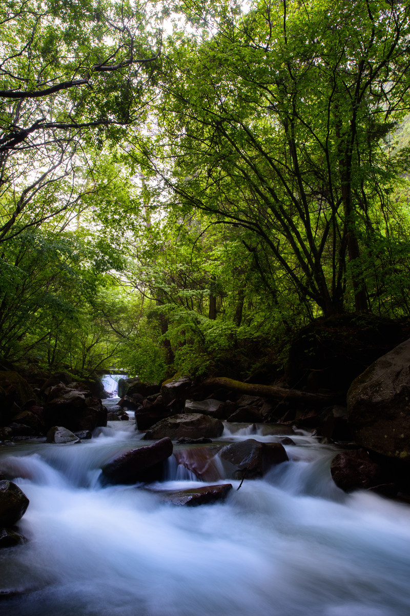 「横谷渓谷のせせらぎ」の写真
