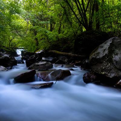 横谷渓谷の上流の写真