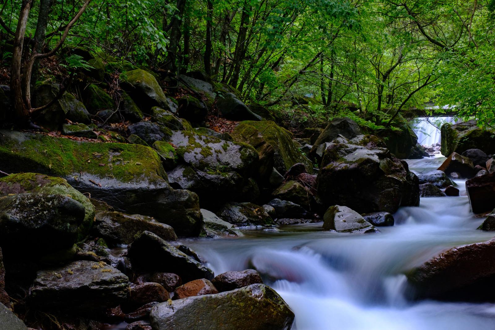 「横谷峡(ヨコヤキョウ)の渓流」の写真