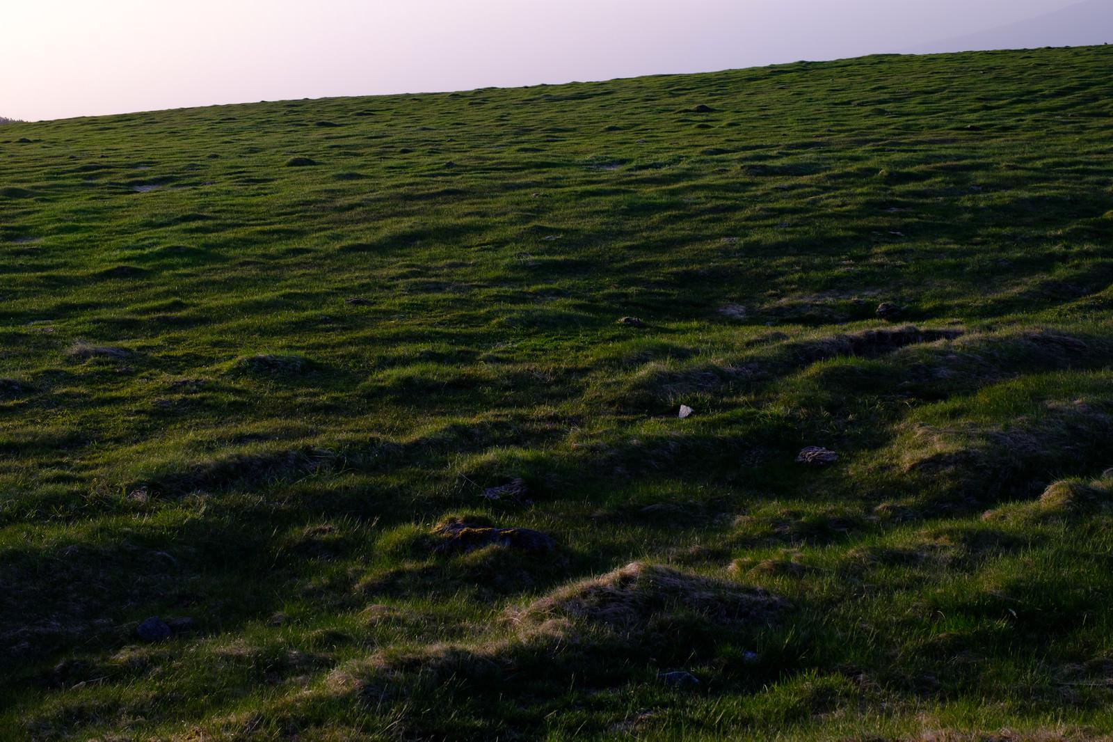 「美ヶ原高原」の写真