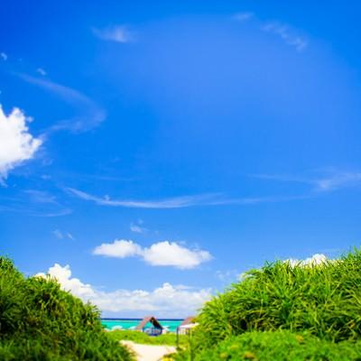 「晴れたビーチ」の写真素材