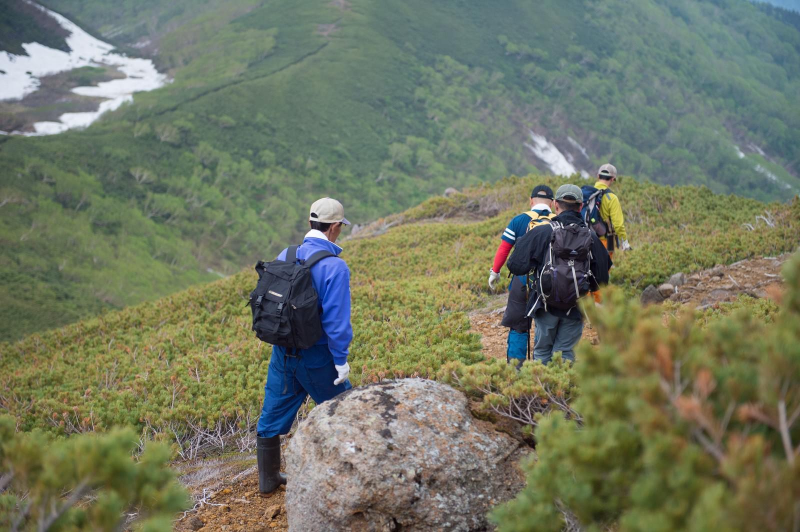「乗鞍新登山道を歩く登山者」の写真