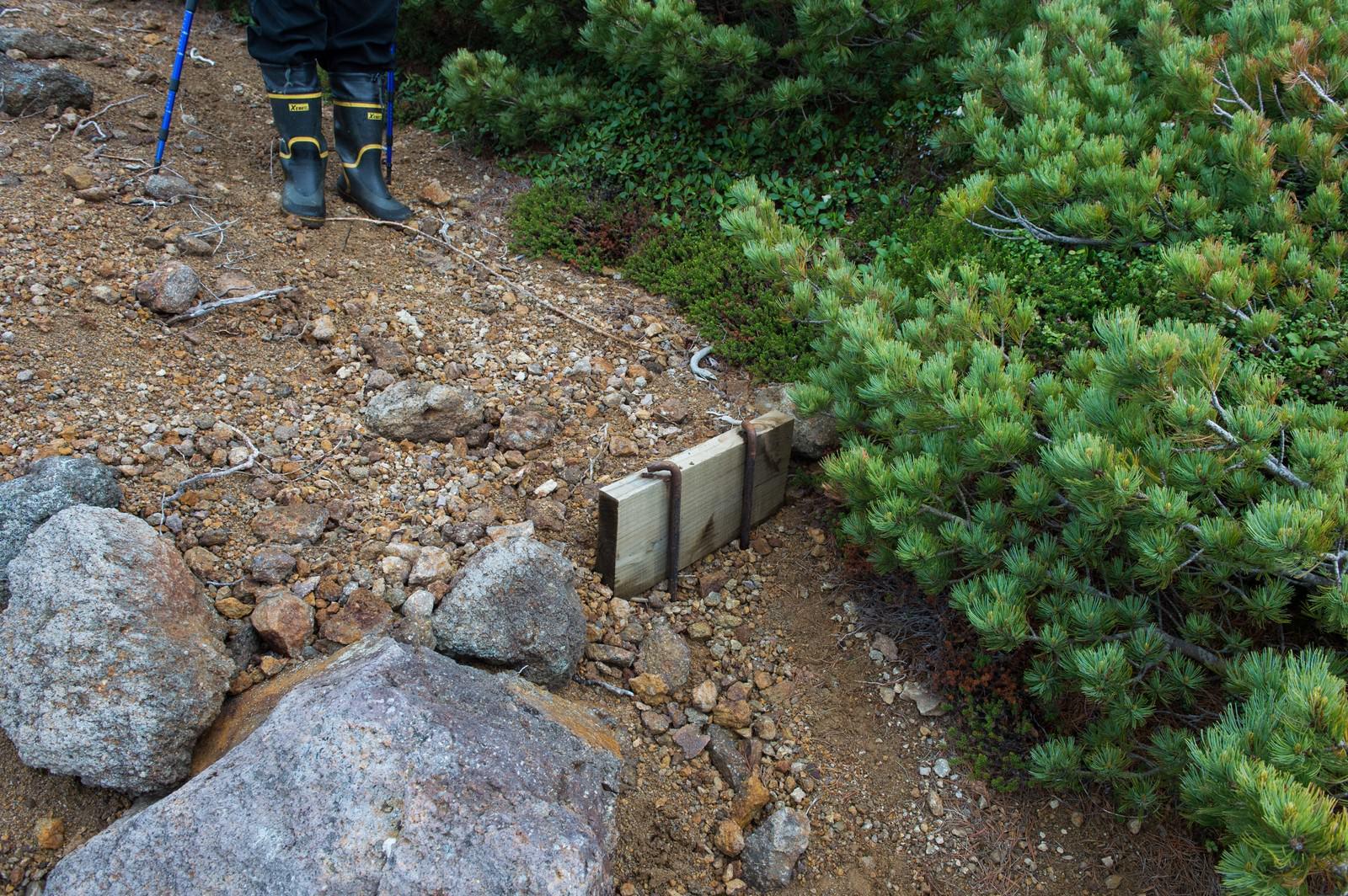 「木材のみへ作り直しが必要な登山道の階段」の写真