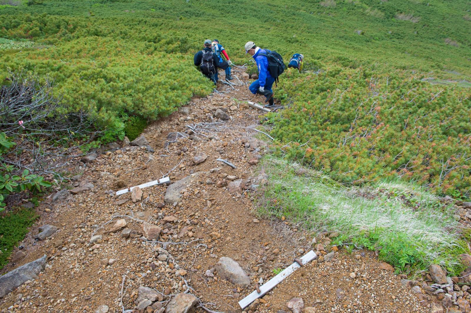 「足場の悪い登山道の傾斜を下る登山者足場の悪い登山道の傾斜を下る登山者」のフリー写真素材を拡大