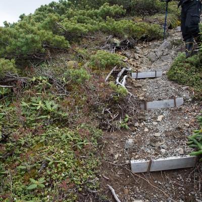 登山道整備が必要な木材の階段の写真