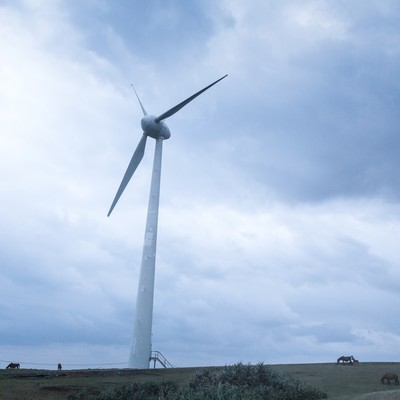 与那国島の巨大風力発電と馬の写真