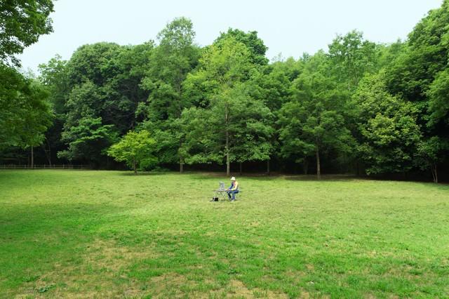 森林公園でノマドなうの写真