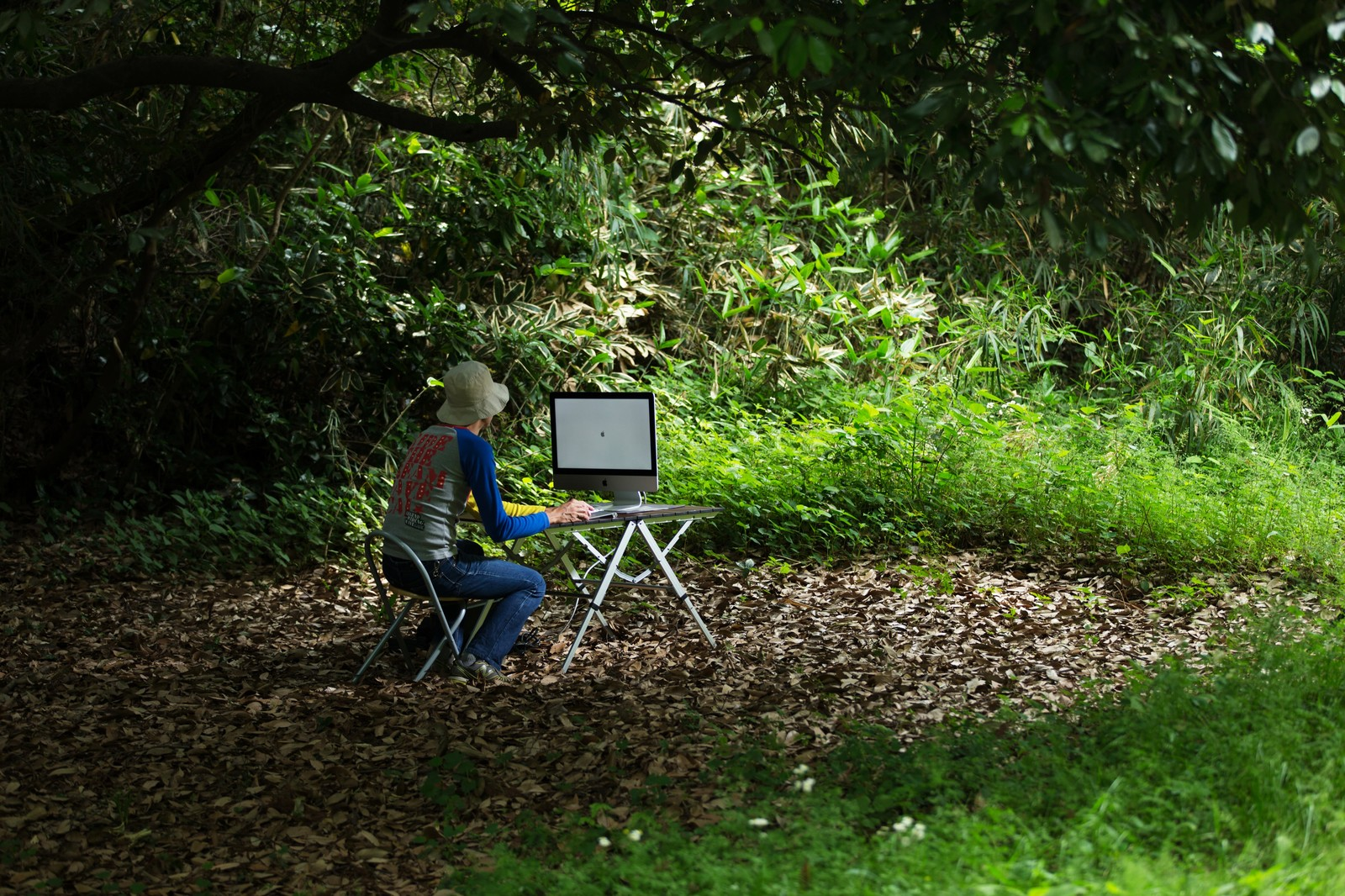 「アップデートがなかなか終わらず森の中でおいてけぼりの新卒デザイナー」の写真