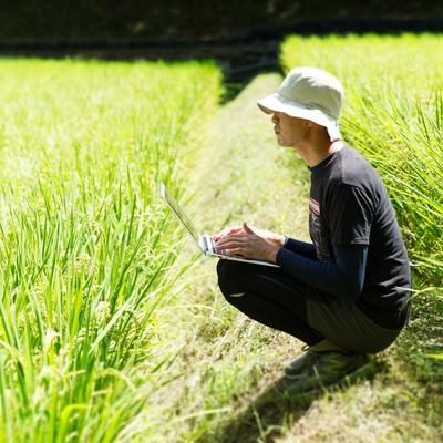 「ふと気がつくと田んぼで作業していたノマドワーカー」の写真素材