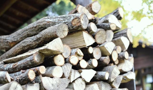 積み重なった薪の写真