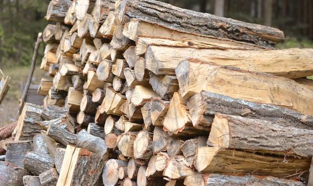 積み上げた薪の写真