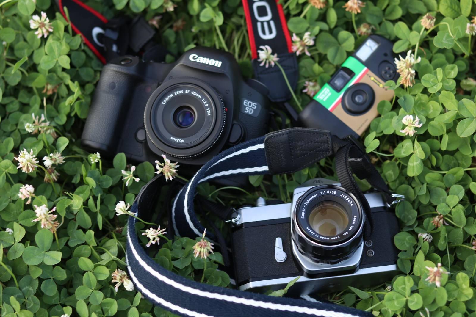 「草むらに置かれたカメラ」の写真