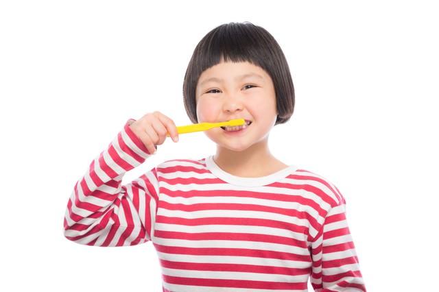 毎日歯磨き!の写真