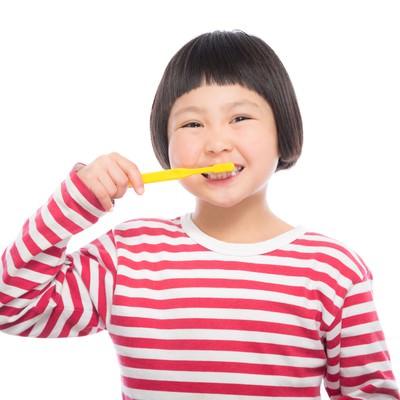 「毎日歯磨き!」の写真素材