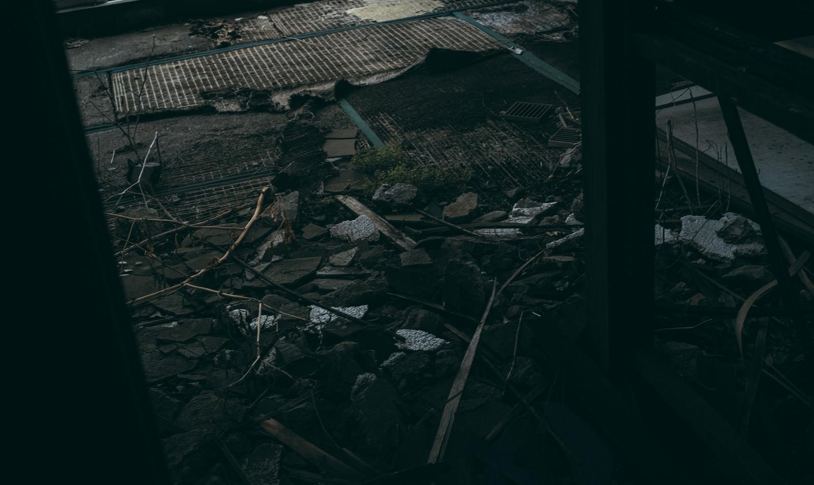 「かつて人が居た面影を感じる和室跡」の写真