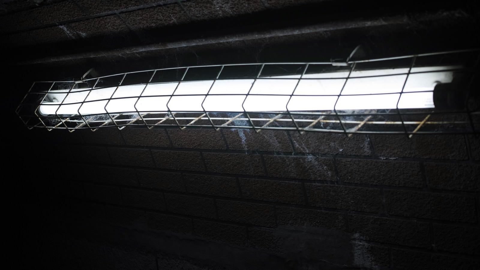 「薄暗い照明」の写真