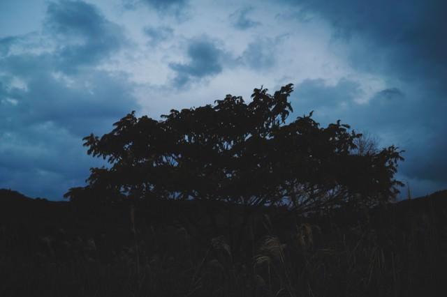 日没前の不気味な天気の写真