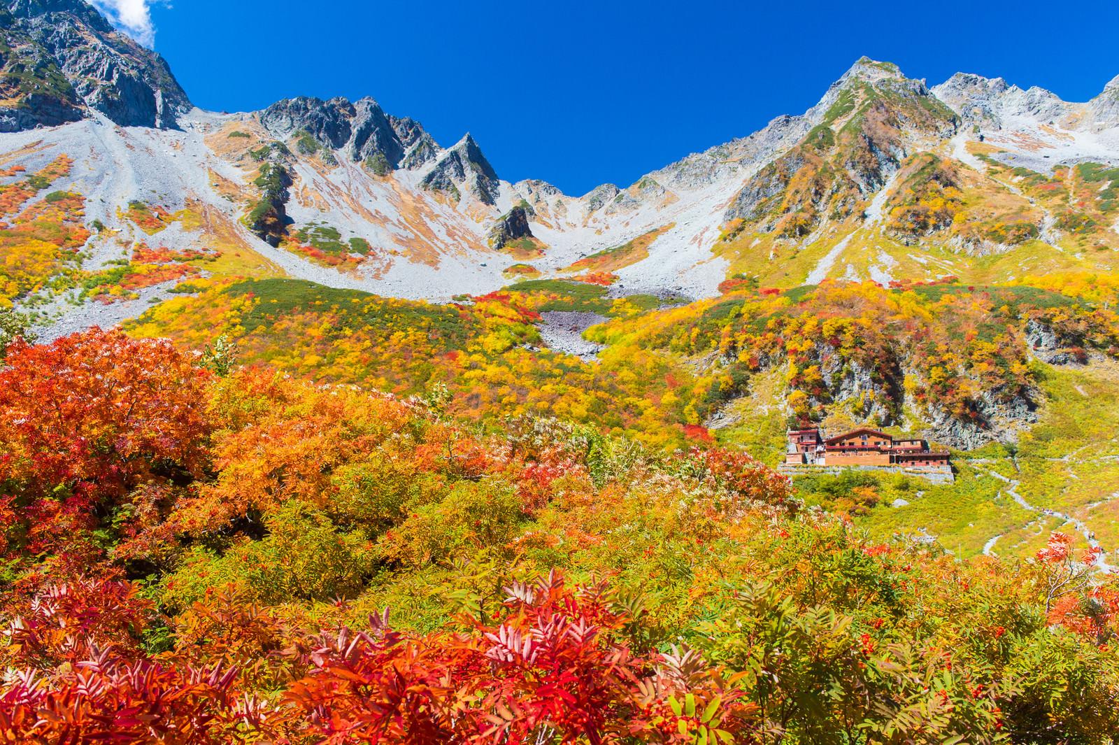「日本一の紅葉と言われる北アルプス涸沢カールのピーク」の写真