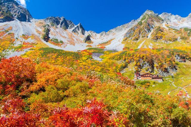 日本一の紅葉と言われる北アルプス涸沢カールのピークの写真