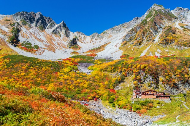 涸沢ヒュッテから見る涸沢カールの紅葉最盛期の写真