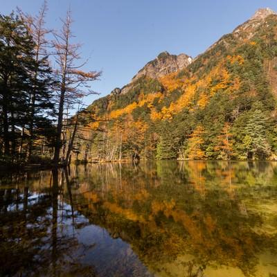 澄み渡る秋の明神池の写真