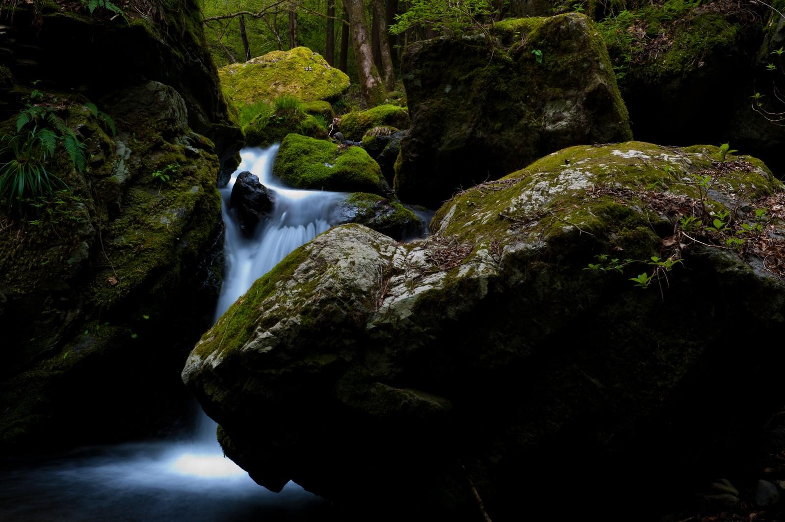 「海沢探勝路の三ツ釜の滝」の写真