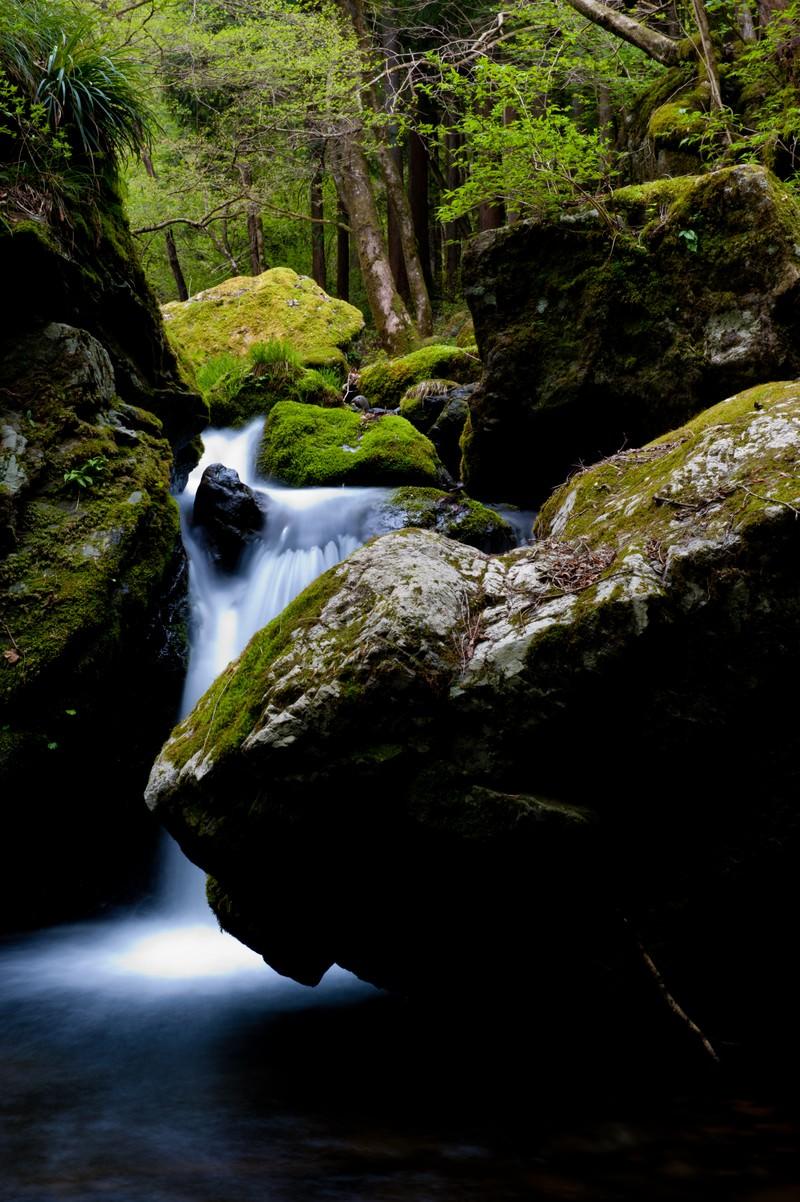「三ツ釜ノ滝(奥多摩)」の写真