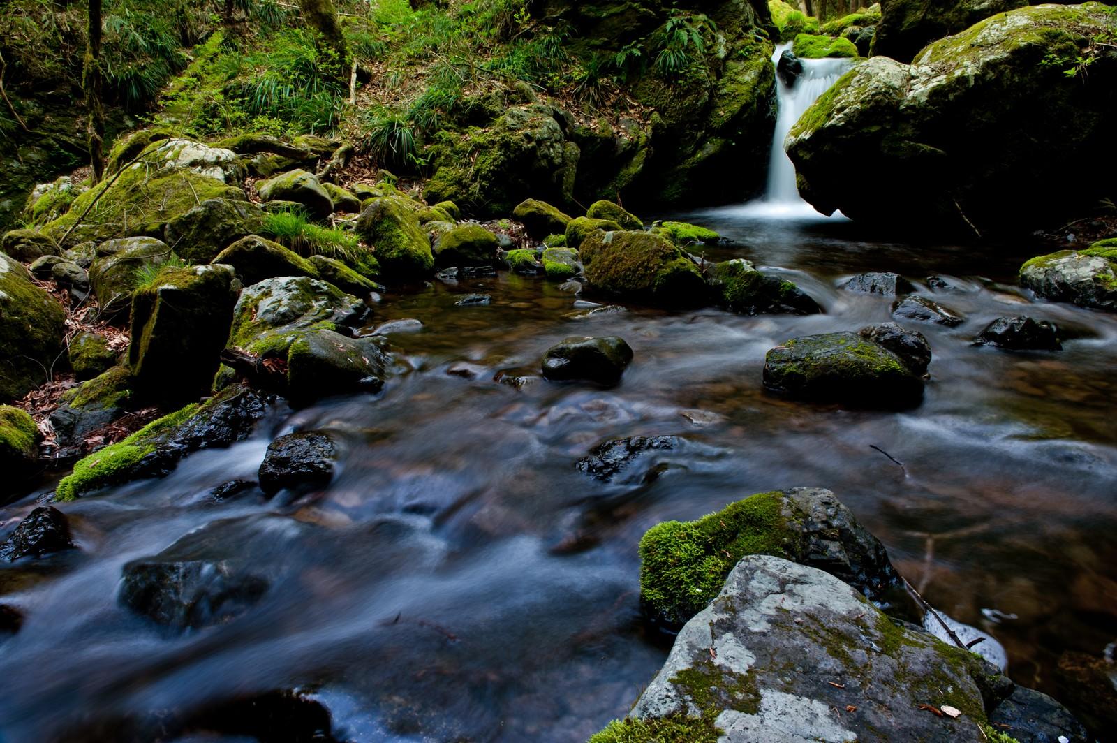 「奥多摩の海沢探勝路の渓谷」の写真