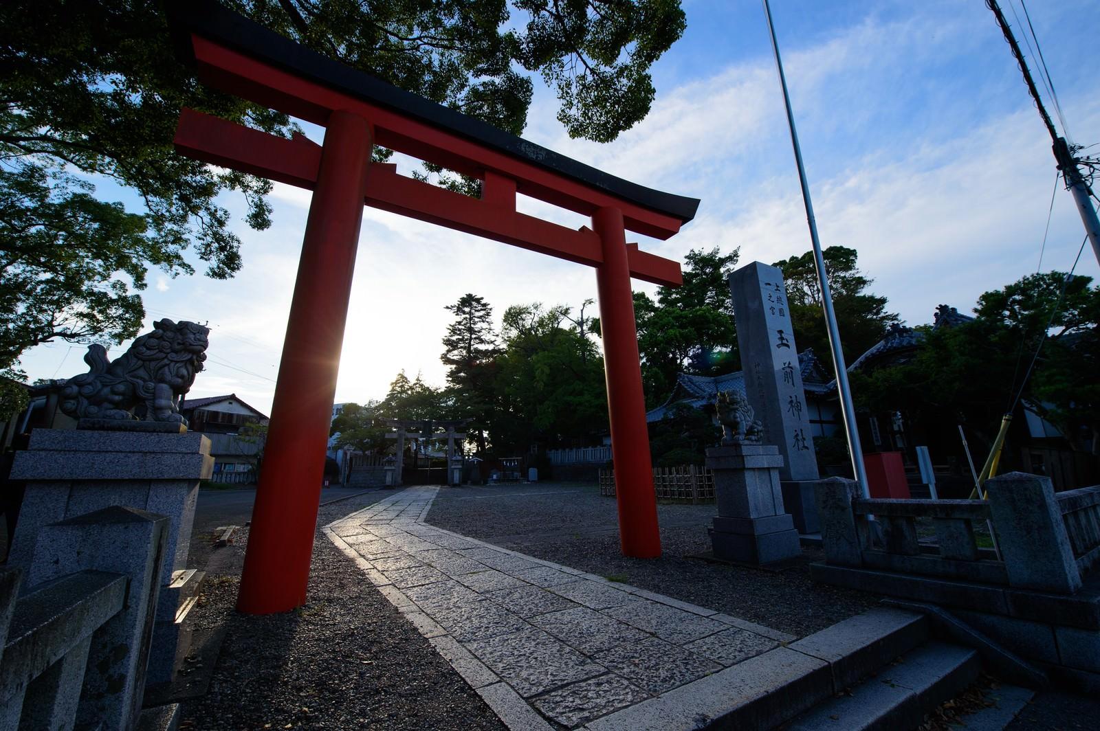 「玉前神社の赤い鳥居(千葉県一宮町)」の写真