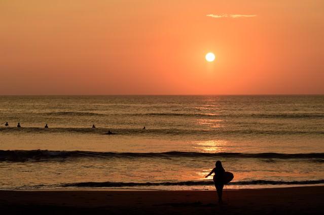 朝日に照らされる一宮海岸のサーファー達(千葉県一宮町)の写真