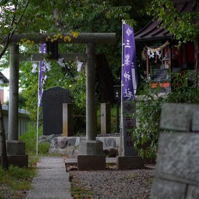 玉前神社境内にある三峰神社(千葉県一宮町)の写真