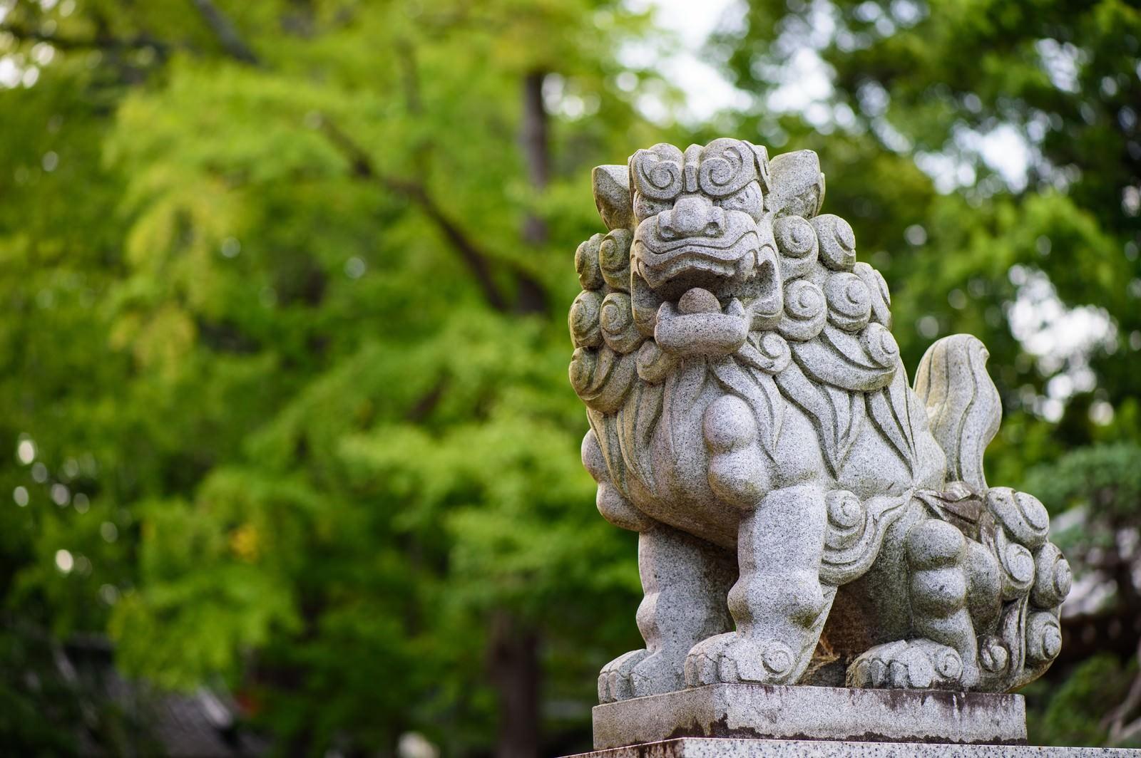 「玉前神社の境内にある獅子(千葉県一宮町)」の写真
