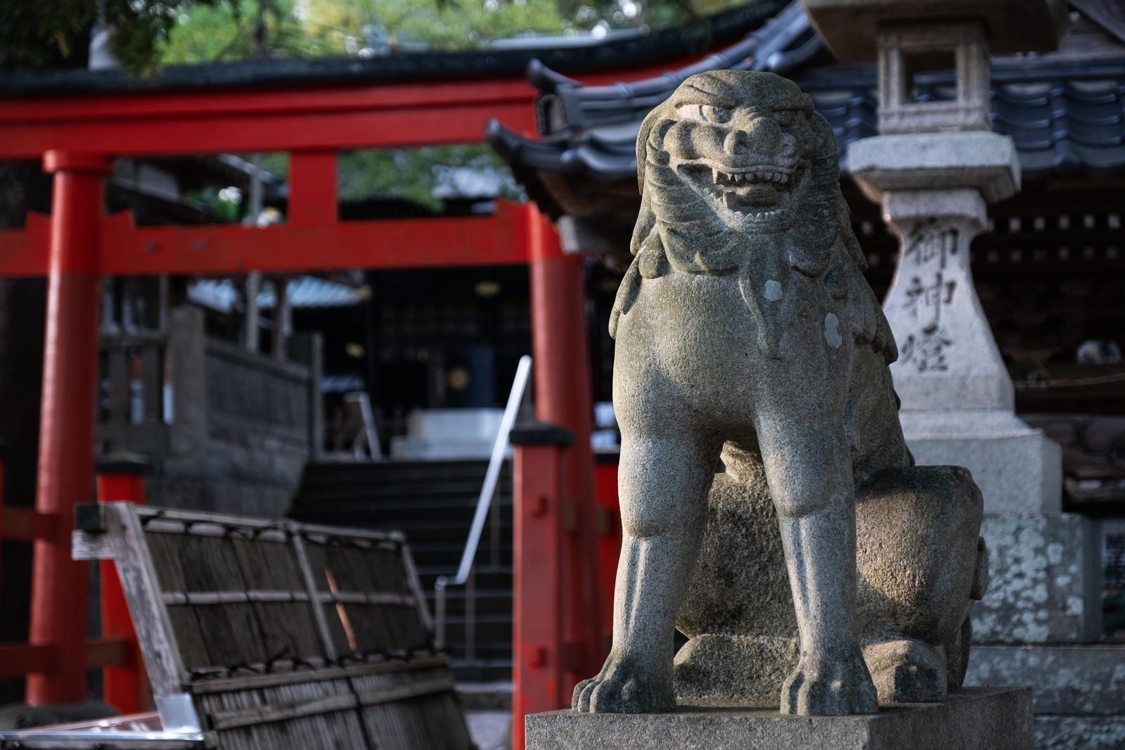 「玉前神社を守る獅子(千葉県一宮町)」の写真