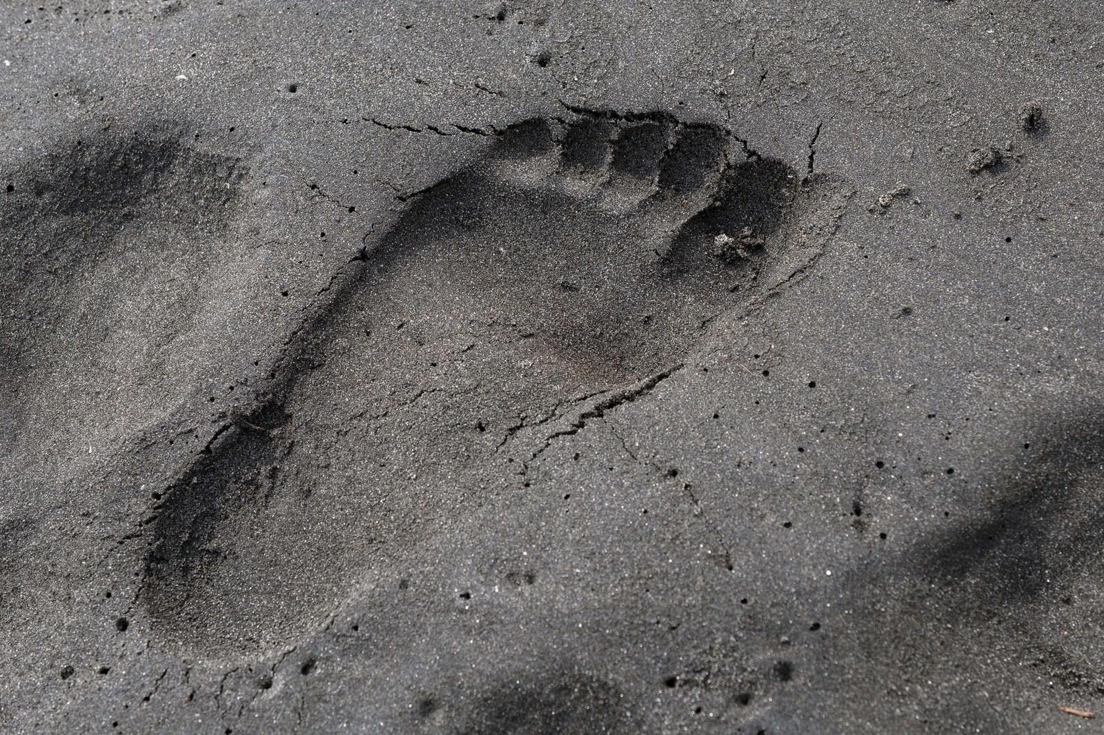 「砂浜に残った足跡砂浜に残った足跡」のフリー写真素材を拡大