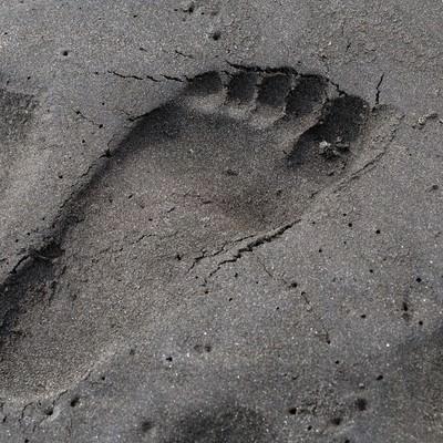 砂浜に残った足跡の写真