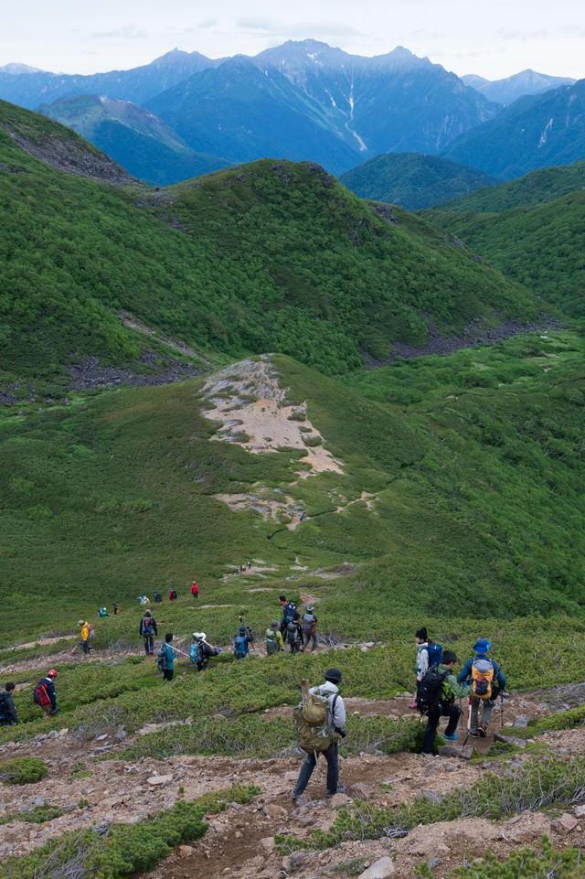 3000峰の北アルプスを望みながら歩く乗鞍新登山道の写真