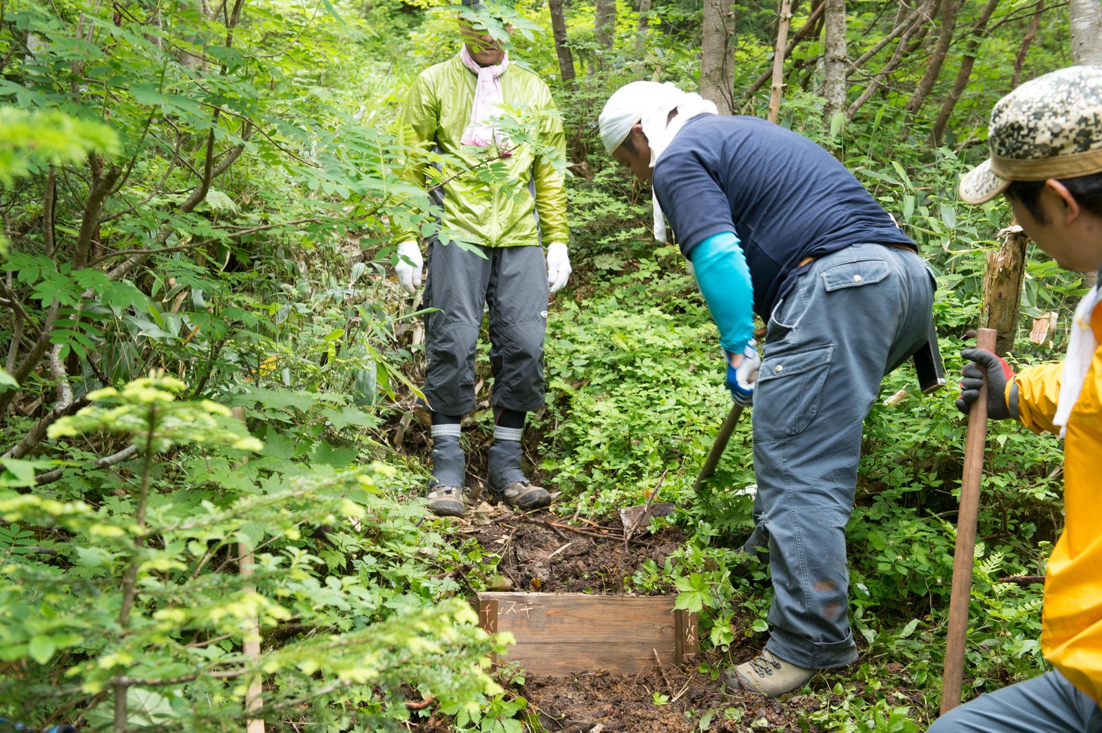 「メーカー社員と地元と登山愛好家が共に行う登山道整備」の写真