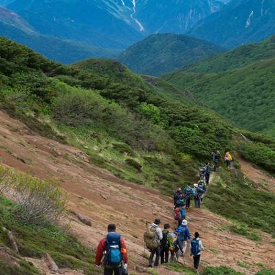 「乗鞍新登山道からみる北アルプス稜線」の写真素材