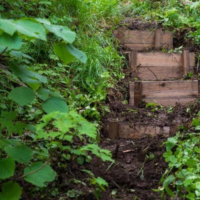 「登山愛好家の協力で整備された乗鞍新登山道の階段」の写真素材
