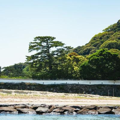 海側から見た、萩城の銃眼土塀の写真
