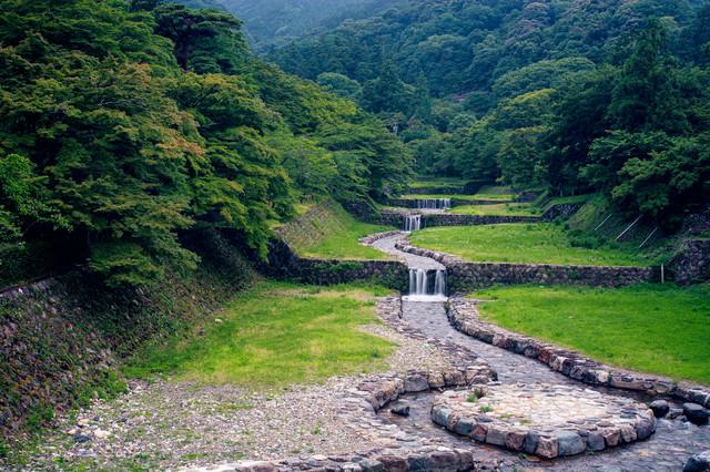 新緑の森から続く整備された川の写真