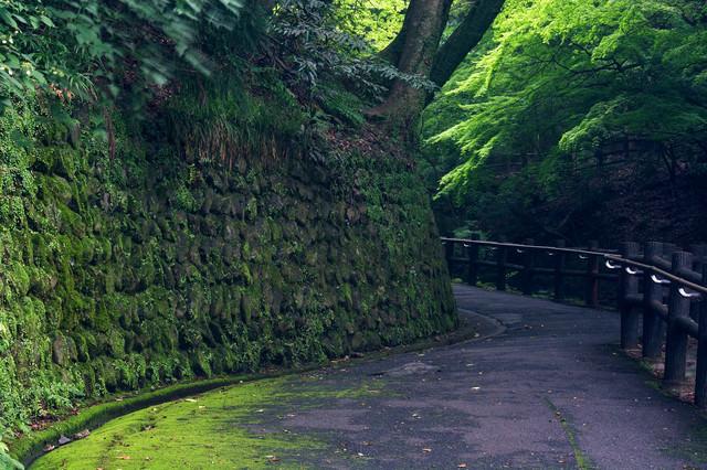 苔生す石積みの壁と遊歩道の写真