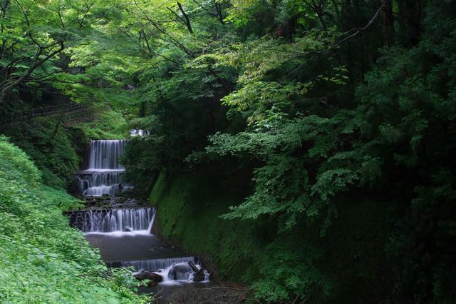 新緑の遊歩道と段々と流れ行く小川の写真