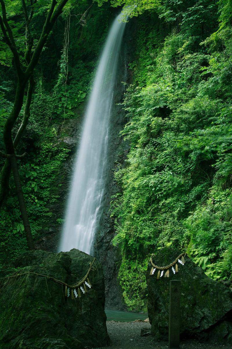 「しめ縄の張られた岩と養老の滝」の写真