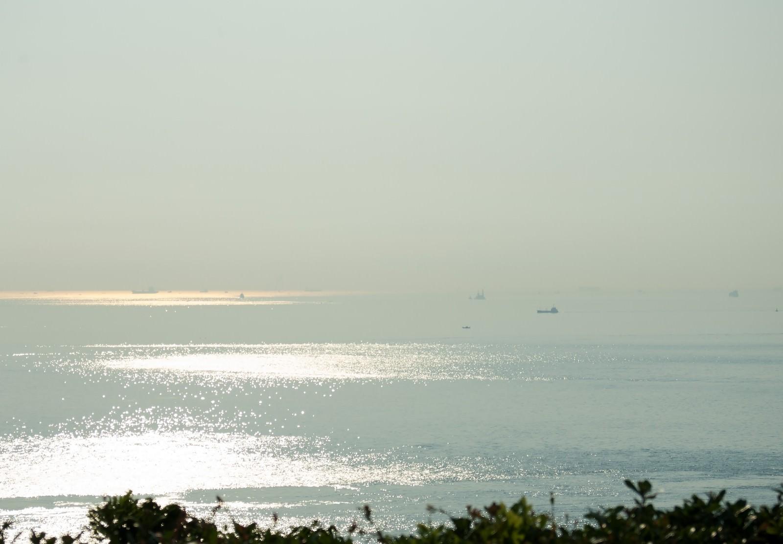 「朝もやの明石海峡を進む船舶」の写真