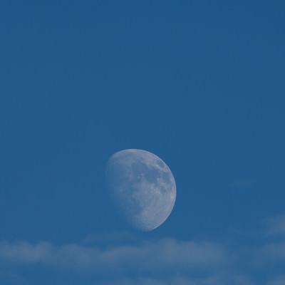 「青空に浮かぶ月」の写真素材