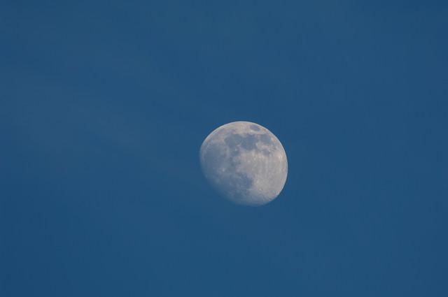 昼間の月(十日夜の月)の写真