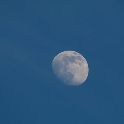 「昼間の月(十日夜の月)」の写真素材