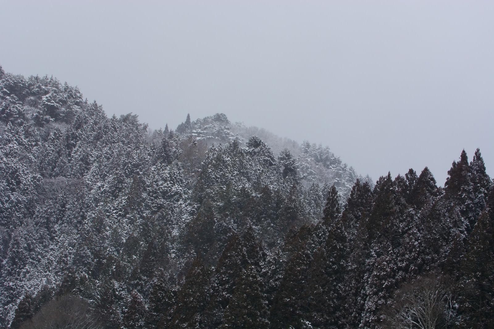 「雪に霞む山間」の写真